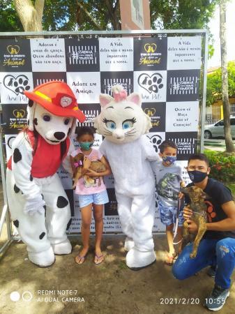 Protetores de animais realizam 2ª edição de adoções em Bragança
